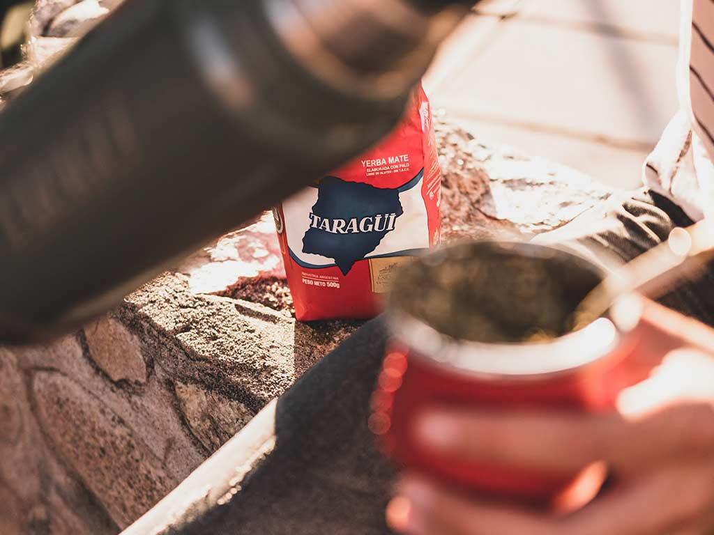 antioxidantes en la yerba mate taragui