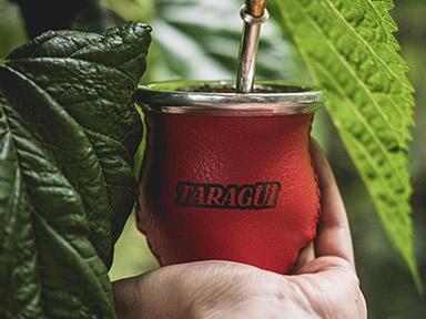 Yerba Mate Taragüi - Información nutricional de la Yerba Mate